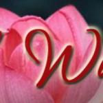 cropped-Bildschirmfoto-2011-04-18-um-19.32.28.jpg