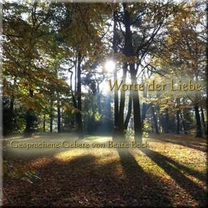 Beate-Bock-Gesprochene-Liebe-Cover-fuer-Gebete-Album_Wald-Licht